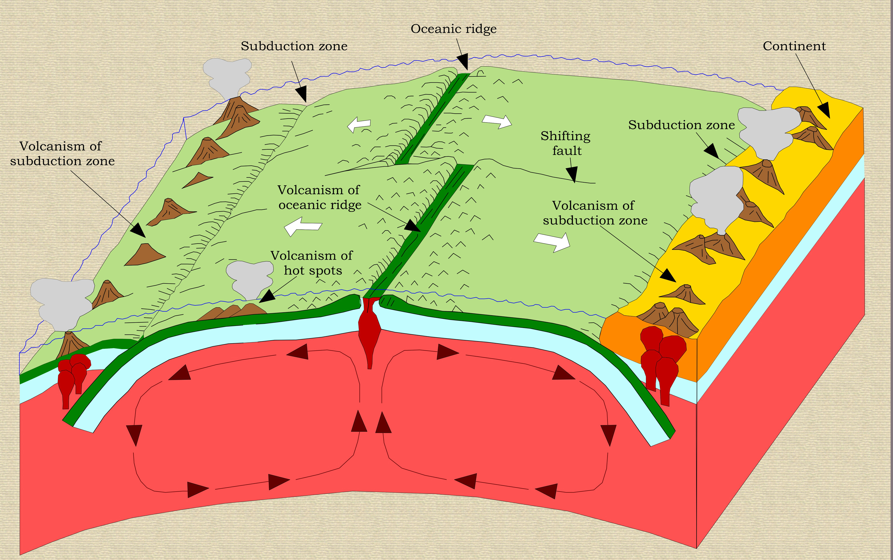 plate tectonics Mr andersen describes how plate tectonics shapes our planet continental and oceanic platers are contrasted and major plate boundaries are discussed.